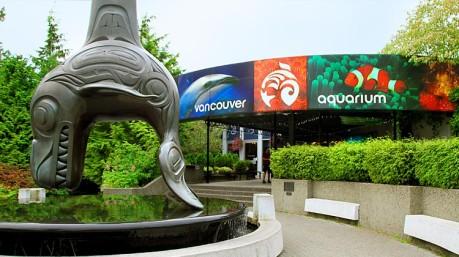 aquarium-entrance