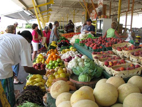 farmers-market-resize