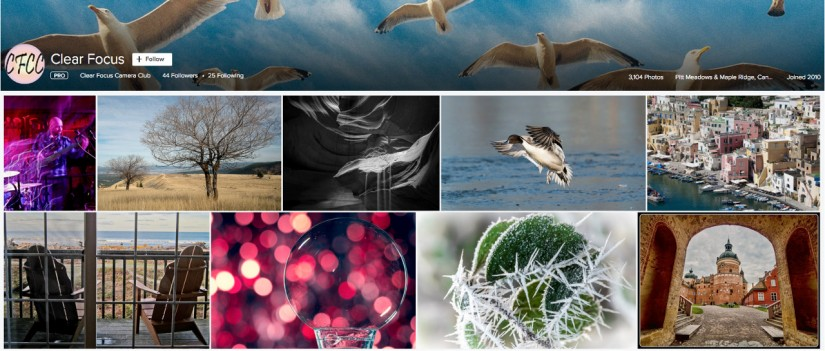 Get Creative With Your Camera With The Clear Focus Camera Club in Pitt Meadows