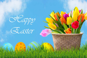 easter-eggs-and-flowers-background-final