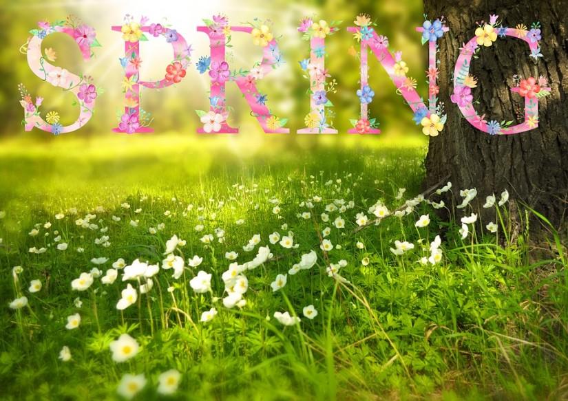 Spring Break In Metro Vancouver