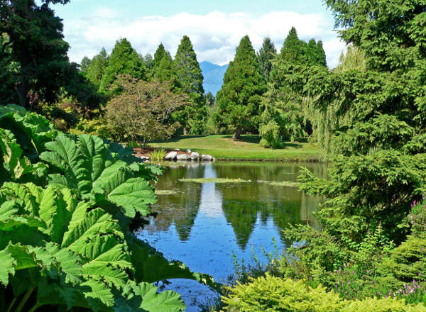 daytime at Vandusen Botanical Gardens, overlooking a lake and gorgeous scenery