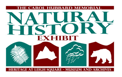 Exhibit Opening – (un)Natural Selection in Port Coquitlam