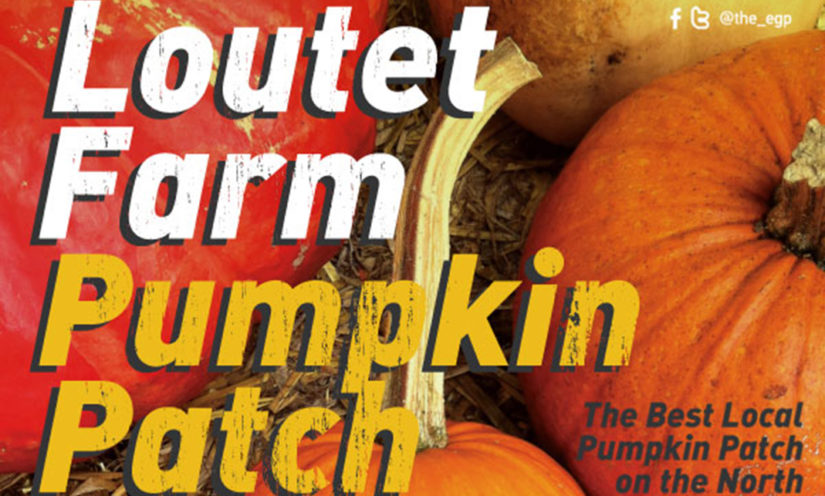 Pumpkin Patch at Loutet Farm in North Vancouver