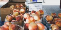Fort Langley Village Farmers' Market