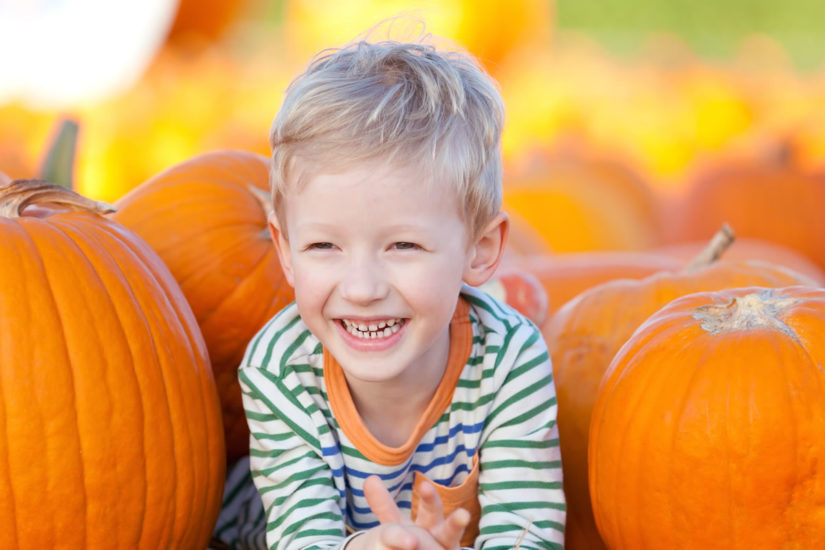 Where to find your perfect pumpkin