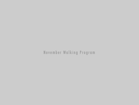 November Walking Program in Abbotsford