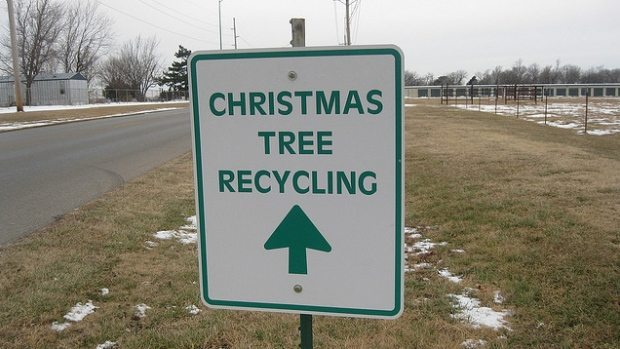 Christmas Tree Recycling in Coquitlam