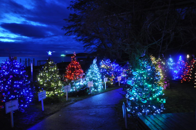 World Christmas in West Vancouver