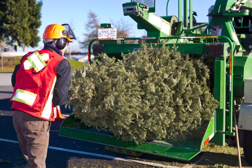 1st West Vancouver Scouts Christmas Tree Chip-Up in West Vancouver