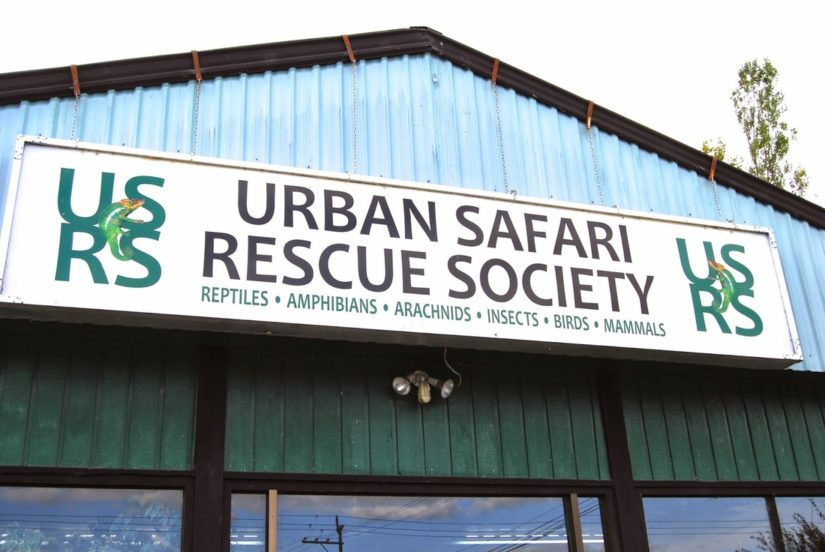 Urban Safari Rescue Society in Langley