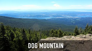 Wild Walks with the Fur-Bearers: Dog Mountain Hike in North Vancouver