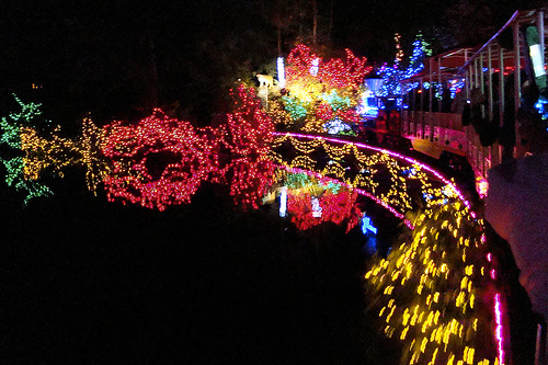 Bright Nights at Stanley Park in Vancouver