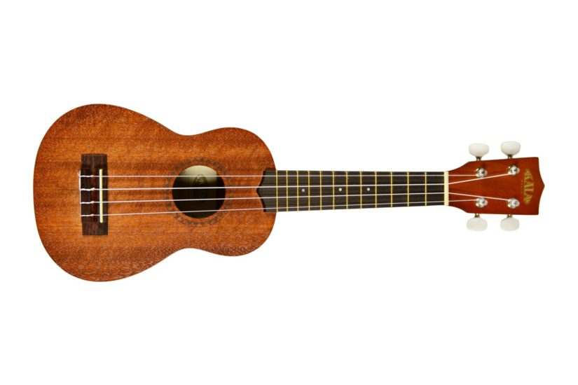 Ukulele Beginners Course in North Vancouver