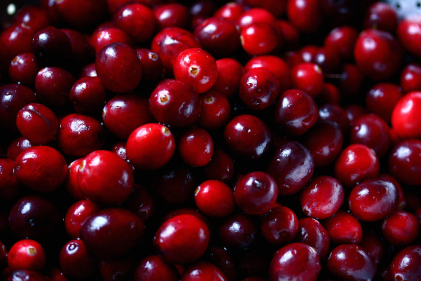 Cranberry Sale 2018 in Richmond