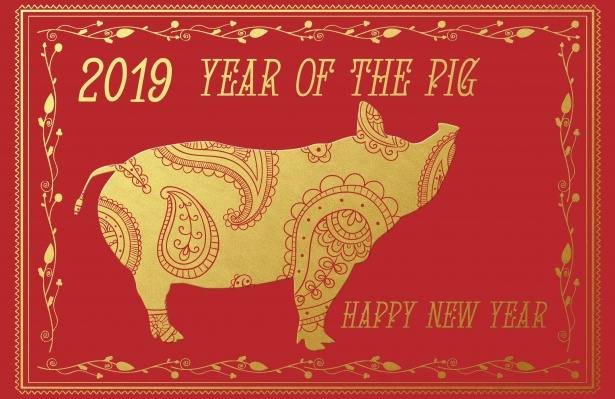 Celebrate Chinese New Year 2019 in Langley