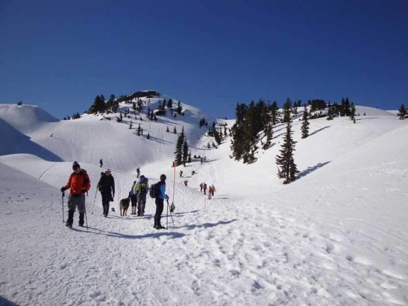 Family Day Weekend at Mt. Seymour 2019 in North Vancouver