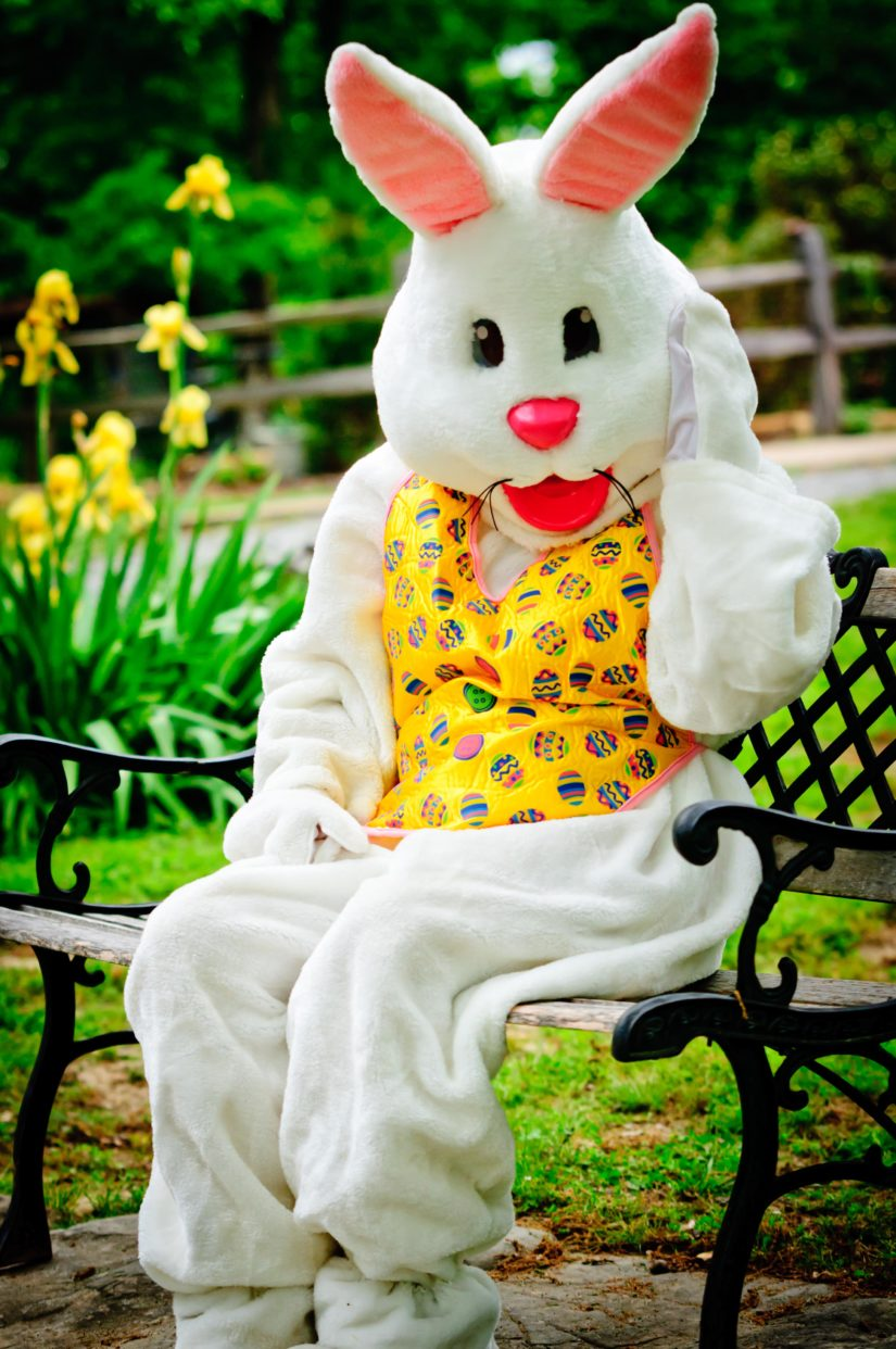 Easter Bunny Skate 2019 in Coquitlam