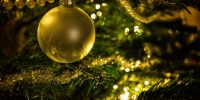 Madoc Christmas Extravaganza